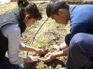 Alumnos realizando su actividad_3